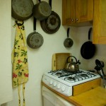 Condo Lani Kitchen - Stove and Dishwasher